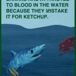 Les requins sont-ils attirés par le sang ?